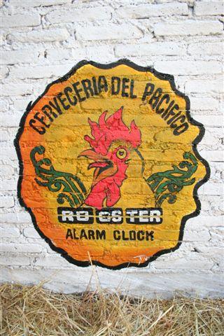 rooster-alarm-clock-rackfish-creature-pacifico